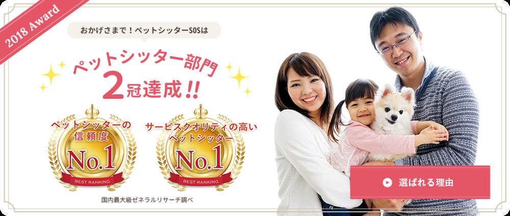ペットシッターSOS – 全国展開のペットシッターサービス、ペットシッター部門2冠達成!!