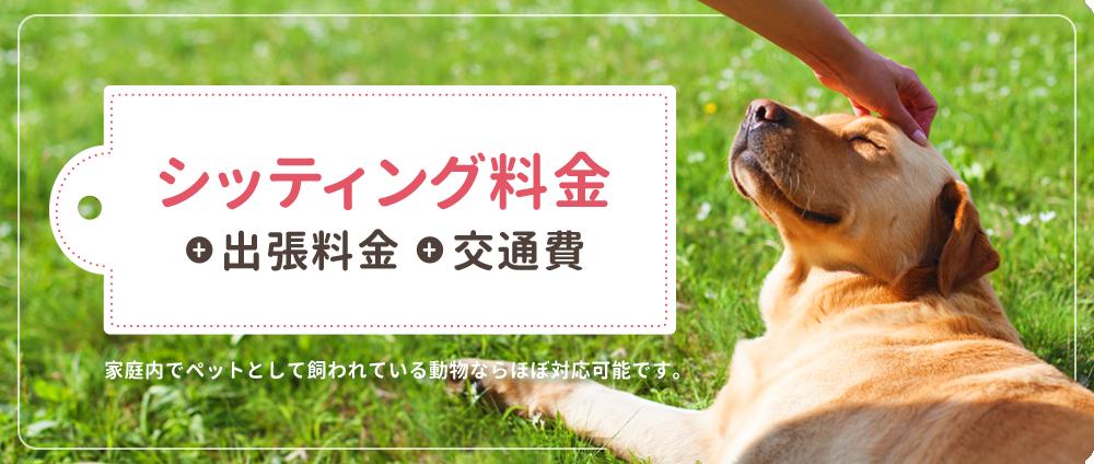 ペットシッターSOS – 全国展開のペットシッターサービス、シッティング料金 + 出張料金 + 交通費 家庭内でペットとして飼われている動物ならほぼ対応可能です。