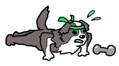 犬の筋トレ