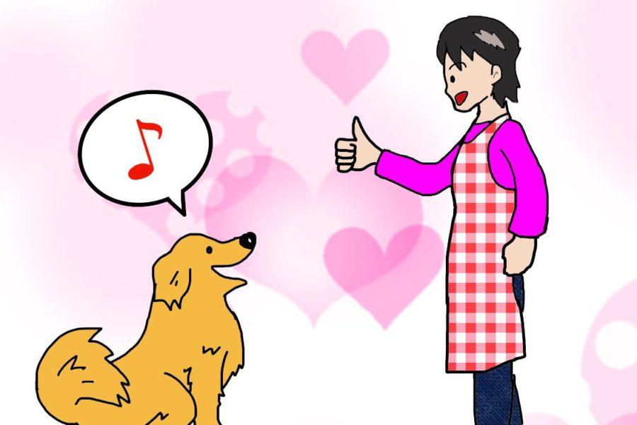 犬の褒め方 ペットシッターsos 全国展開のペットシッターサービス